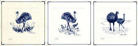 Three Emu Prints